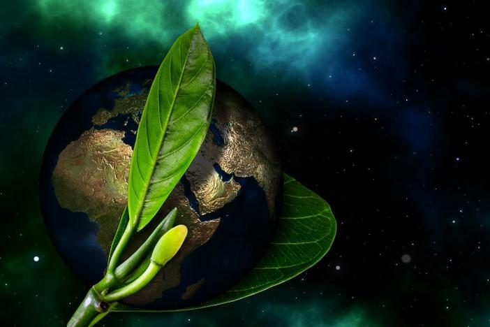 earth-2220978_960_720.jpg
